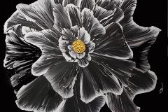 Linda_Clary-Night_Light_Acrylic