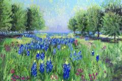Donna_Chambers-Hambers-Texas-Blue-Bonnets-pastel