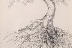 Kay_Hoag-Tree-in-Ta-Prohm-Temple-graphics