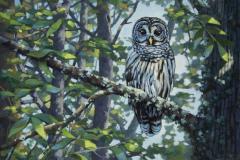 Steve_Miller-The-Watcher-Oil-Acrylic