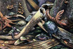Wendy_Koehrsen-Turtlescape-Pastel-Graphics