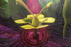 DanMyers-Passion-Flower-OilAcrylic-495
