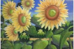 DonnaChambers-Five-Sunflowers-PastelGraphics-225