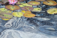 SteveSanderson-RestlessWaterlillies-WaterMedia-125
