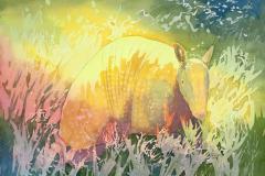 TerriHennessy-Armadillo-Watercolor-100