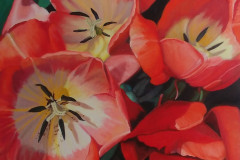 Patricia_Klamm-Light-Falling-on-Tulips-Oil-Acrylic-495
