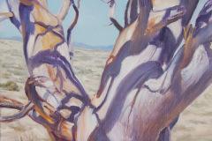 Robert_Dozal-Purple-Shadows-Oil-Acrylic-850