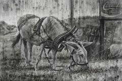 Steve_Miller-Minimum-Wage-Charcoal-1125