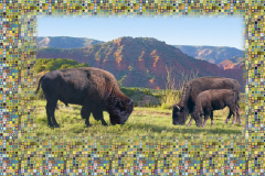 David_Blow-Comanche-Country-Photography-DigitalArt-750