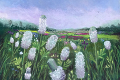 Donna_Chambers_Field-of-White-Clover_Pastel-Graphics