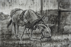 Steve_Miller-Minimum-Wage-Charcoal-1125